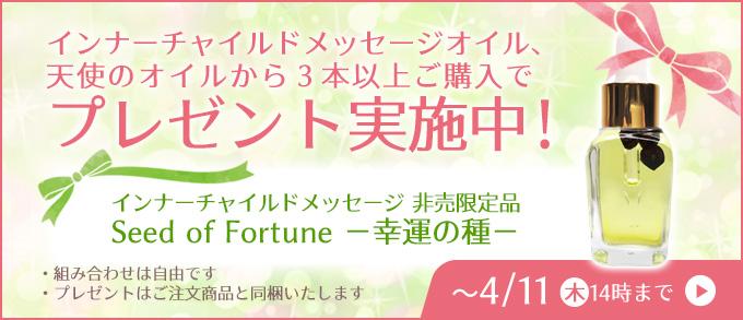 非売品「Seed of Fortune(幸運の種)」プレゼント!